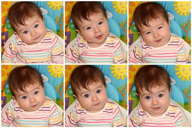 The many faces of Harper
