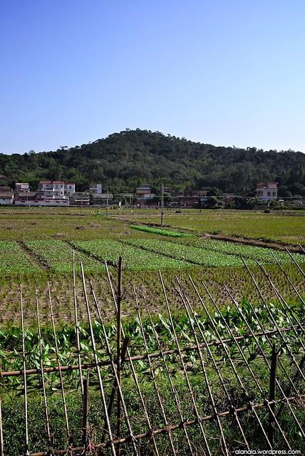 Liang Qi Settlement