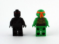 9 - 79100 Figs Back (Shell Off)