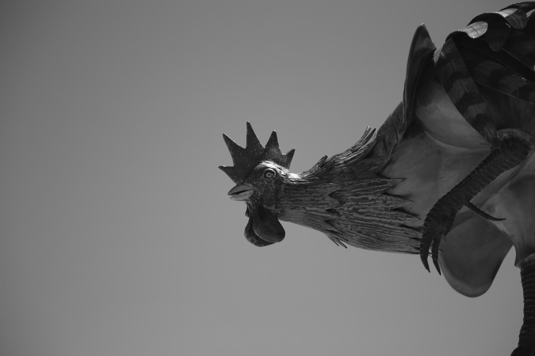 sculpturebythesea-7.jpg