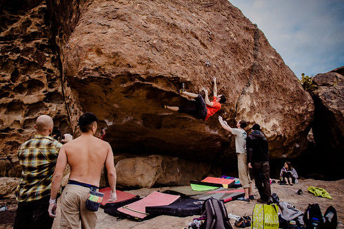 Max working Fern Roof (V10)