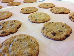BabyCakes Chocolate Chip Cookies