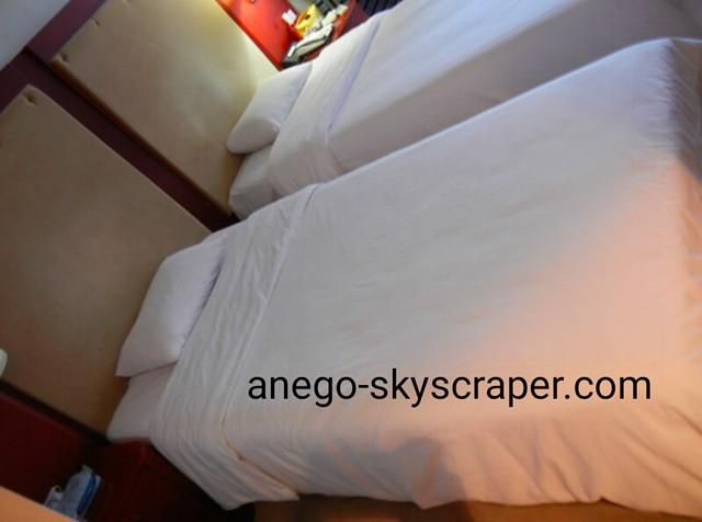 アジアレイクサイドホテル