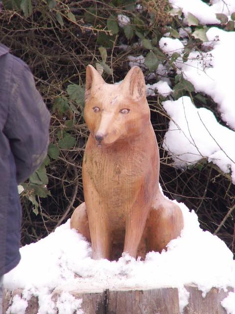 Rosliston - wily fox