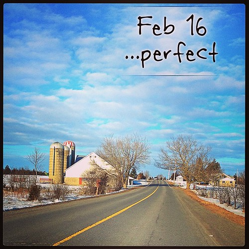 Feb 16 - perfect {a perfect day for a drive} #fmsphotoaday #princeedwardcounty