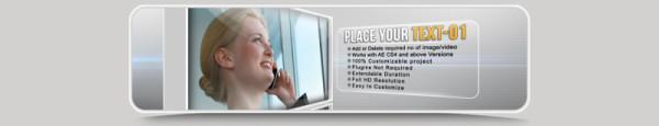 Profile_Business Promotion