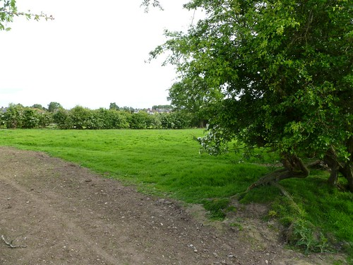 The site of Milecastle 65