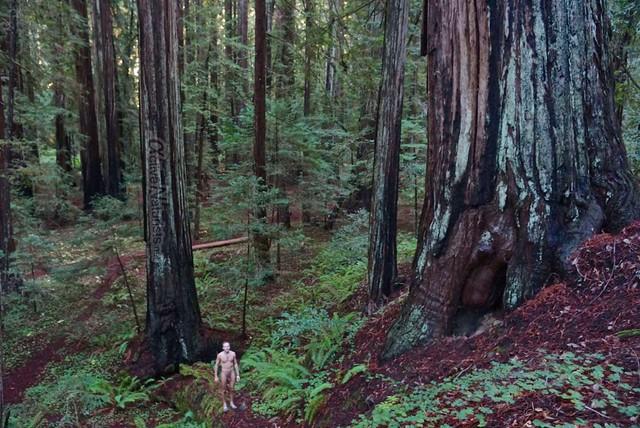 naturist 0015 Orr springs, CA, USA