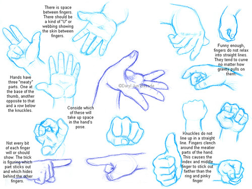 how_to_draw_hands_11