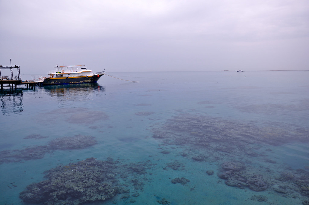 Soma Bay, Red Sea, Egypt 5