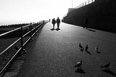 Walking shadow.