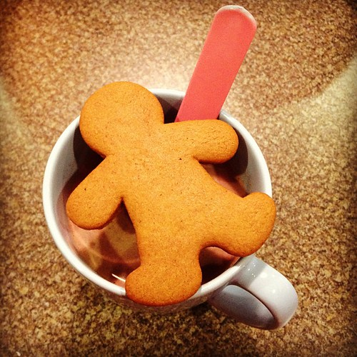 Homemade Gingerbread and Hot Cocoa kind of afternoon.