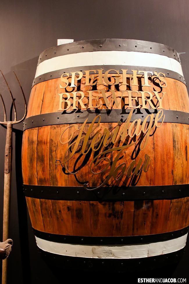Speight's Brewery Heritage Tour Dunedin | Day 2 New Zealand Contiki Tour | Lake Ohau to Dunedin | A Guide to South Island