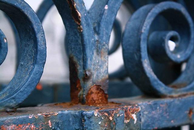 blue cage paris montemarte