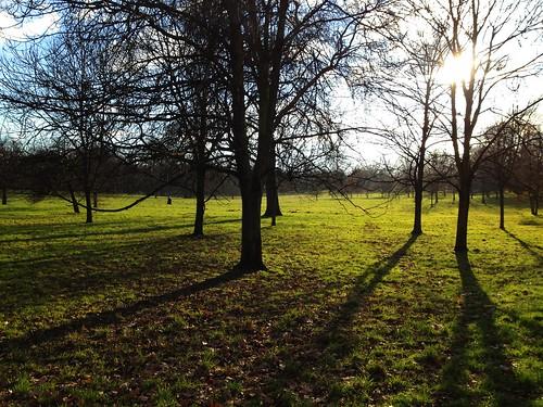 Spring has sprung at Hyde Park, London