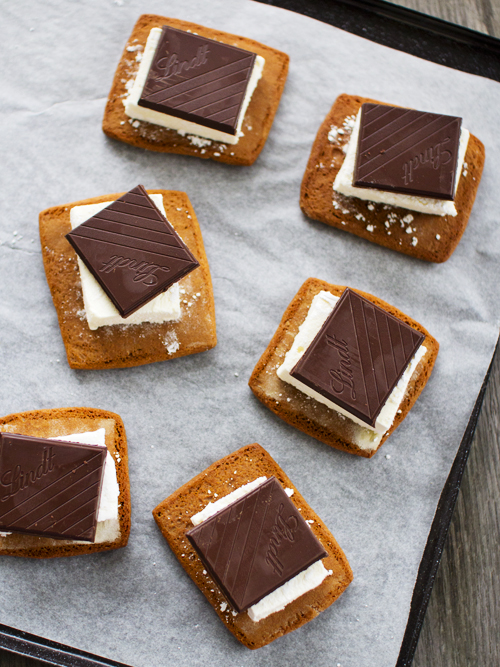 passionfruit s'mores
