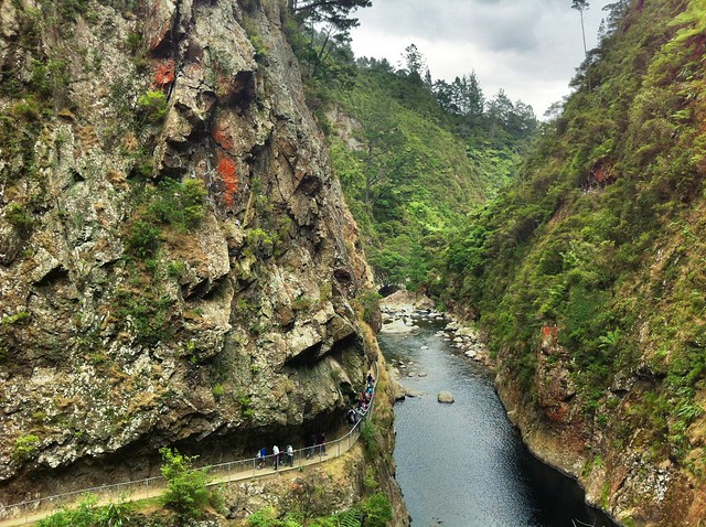 Es Karangahake Gorge Walk
