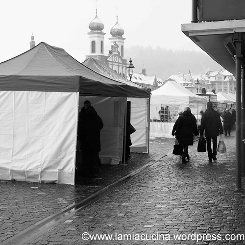 Luzern Winter-2013 01 19_9322