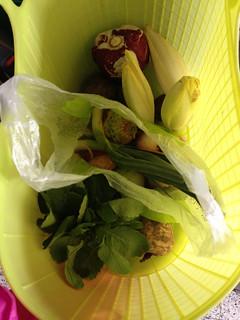 Premier panier de légumes du jardin potager