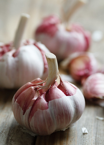 Garlic by Luiz L.