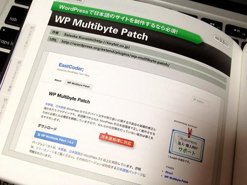 Japanese WordPress Plugins Book: WP Multibyte Patch