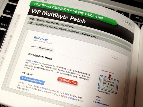 Japanese WordPress Plugins Book: WP Multibyte Patch