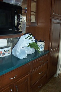 First bag of groceries