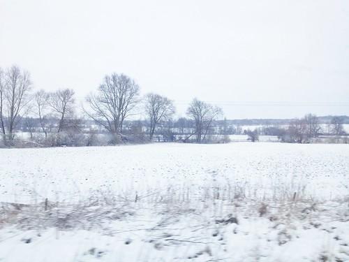 Snowy fields outside Cambridge