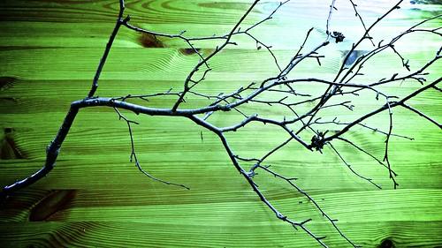 Paper Tree 1