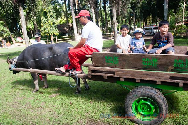 Balik Bukid-47.jpg