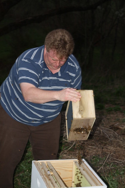 Shaking the bees out