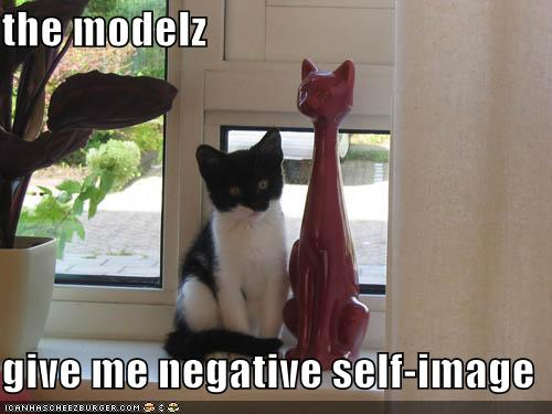 funny-pictures-self-image-cat