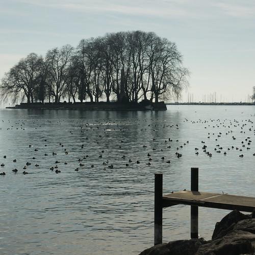 Jurabogen 2012 02 28_3371