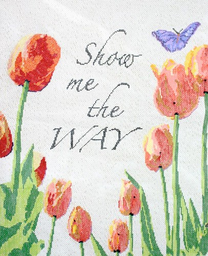 """Show Me the Way"", 2/20/13"