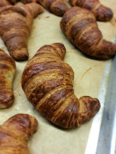 plain croissant by pipsyq