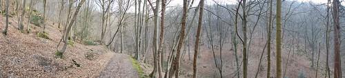 La vallée du Ninglinspo