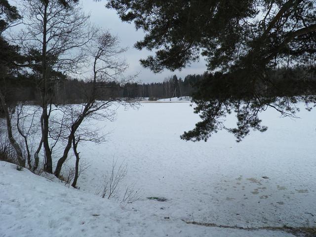 Красный пруд // Red pond