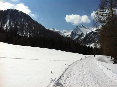 Abfahrt von der Pircher Alm Weißenbach über die Rodelbahn
