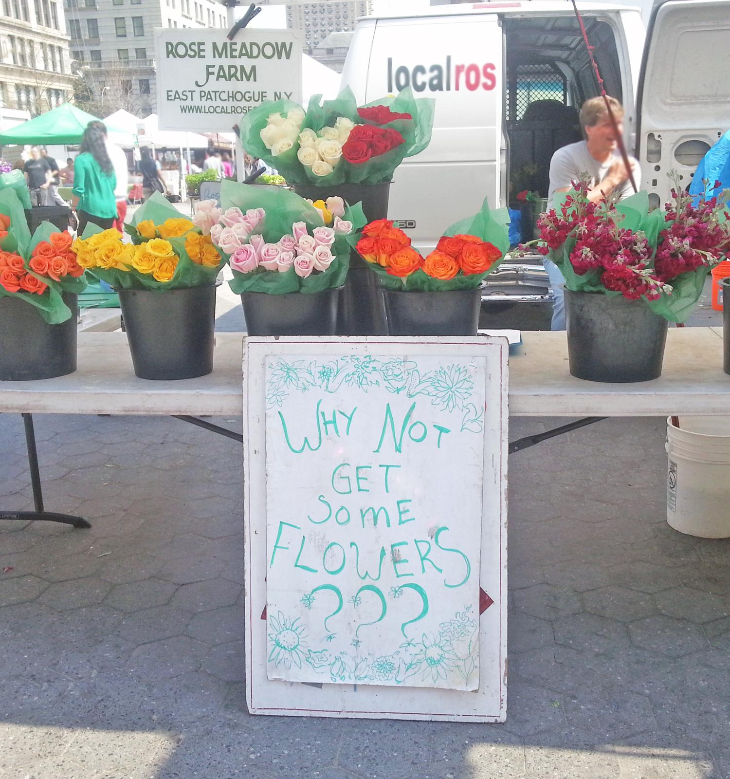 usq-flowers