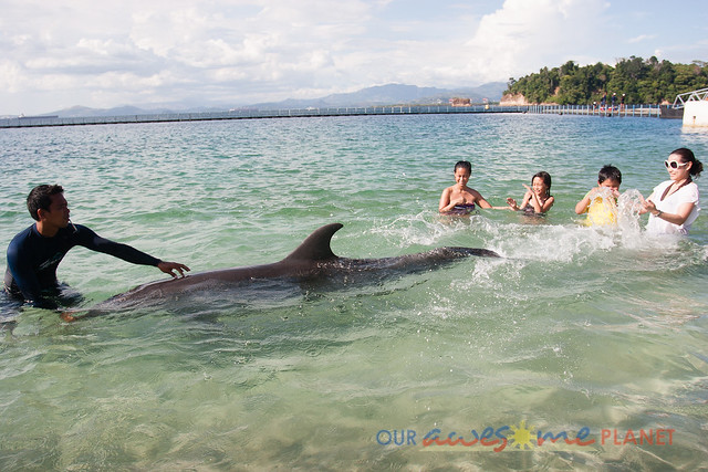 Beach Encounter with Dolphin-14.jpg