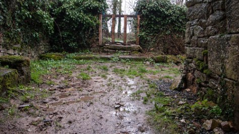 Mud and rain in a french garden