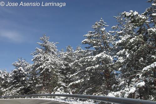 Navarra #DePaseoConLarri #Photography  160