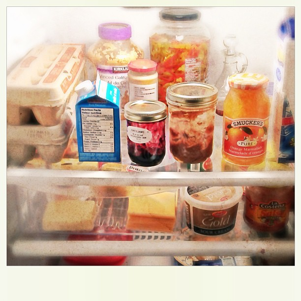 Apr 8 - what's in the fridge {just the basics} #photoaday