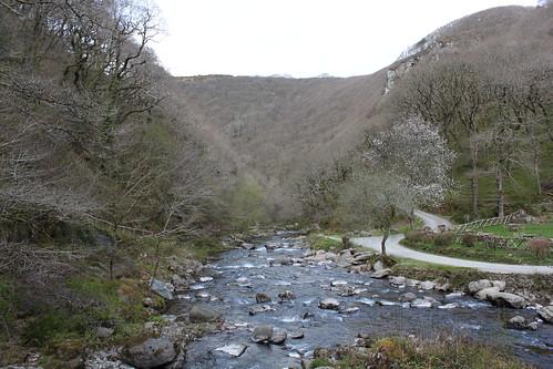 20120416_3978_Watersmeet-woodland-walk