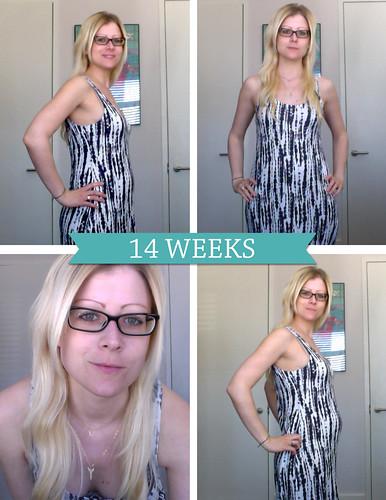 14weeks