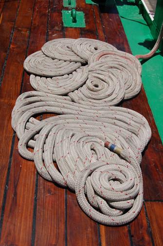 fancy coils 2