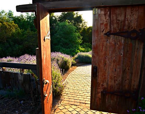 """Opened the door of faith..."""