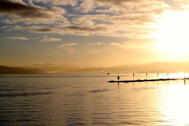 Tuesday: glorious dawn and bird photobomb