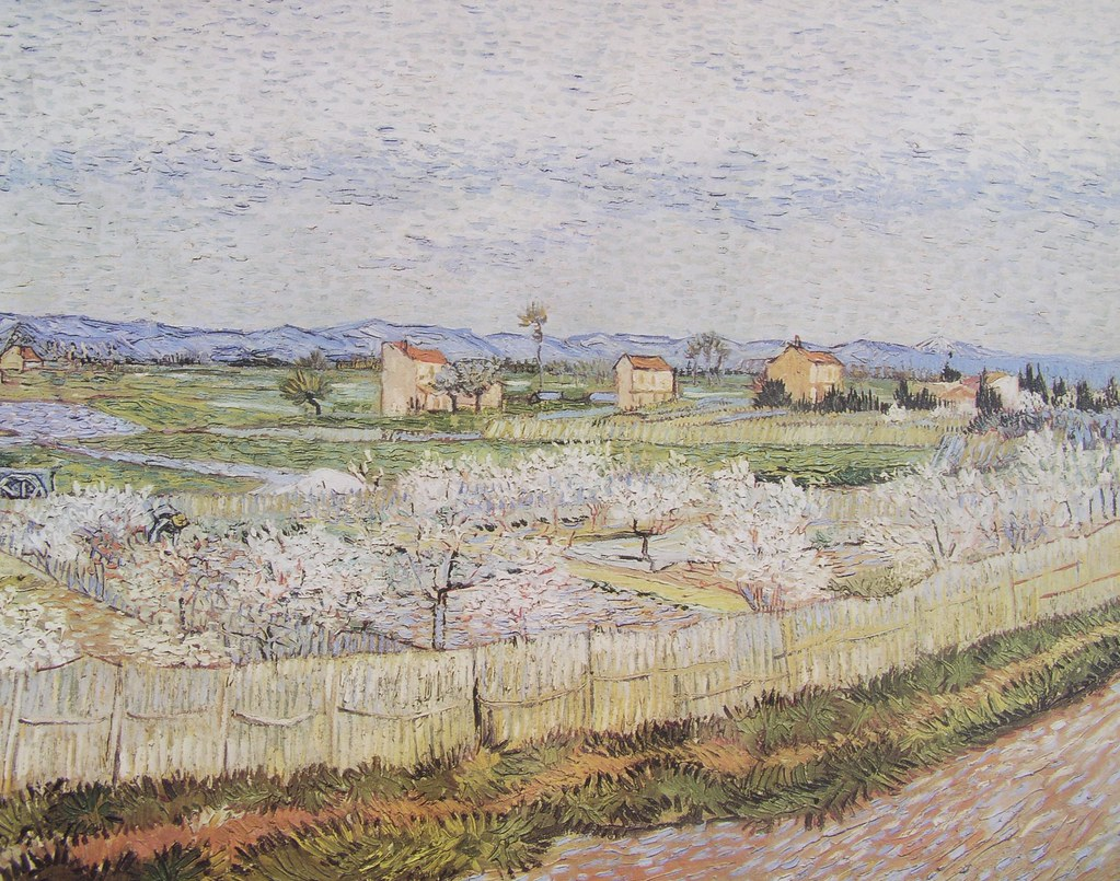 Vincent Van Gogh   (64)