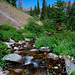 Trailside Creek